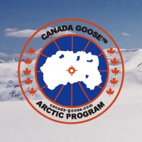 CANADA GOOSE FALL & WINTER